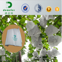 33X43cm 36g White Micropore Paper Good Breathability Grape Cover Paper Bag Popular Used in Peru, Chile Market